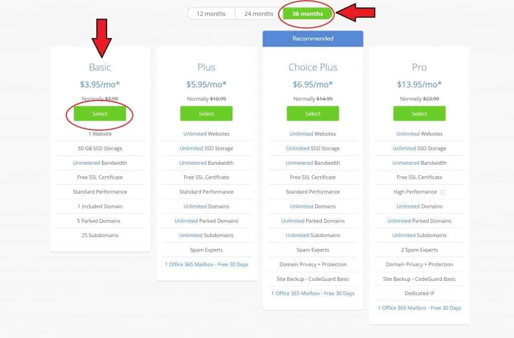 bluehost hosting plans | how to make money on a blog | how to blog for profit