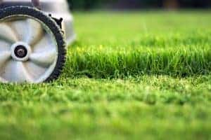 lawnmower mowing grass, a job teenagers can do to make money