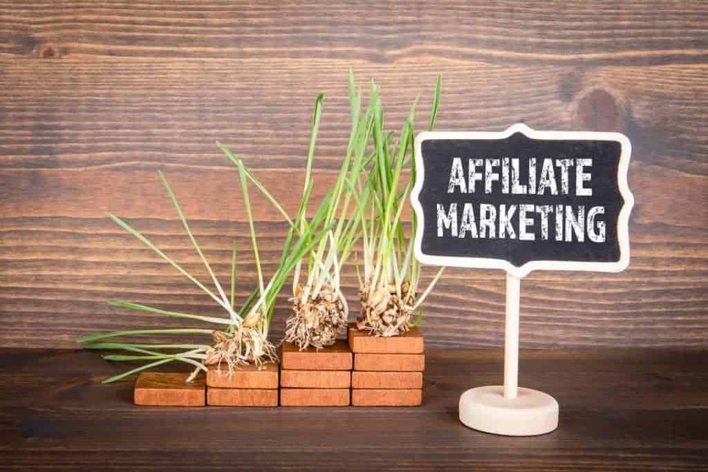 Affiliate marketing banner with growing plants